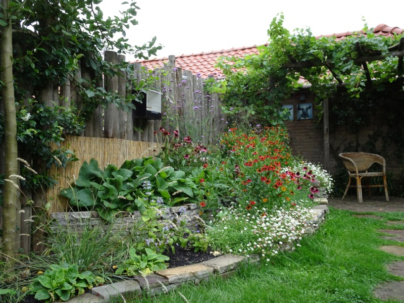 QGardens Tuinontwerp | Natuurlijke Tuin | Pergola | Stapelmuur | Vaste Planten | Tuincoach | Gardendesign | Gardencoach
