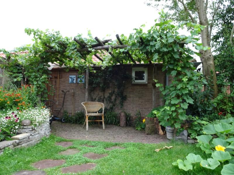 QGardens.nl | Tuinonwerp | Pergola | Kastanjehout | Druif | Natuurlijke Tuin | Tuincoach | Garden design | Gardencoach