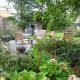 Buitenleven Bij De Appelschuur | QGardens Tuinontwerp | Gardendesign