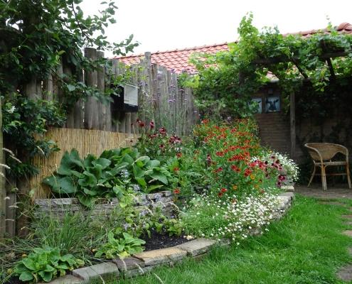 Natuurlijke Tuin | Pergola | Stapelmuur | Vaste Planten | QGardens Tuinontwerp | Tuincoach | Gardendesign | Gardencoach_50c
