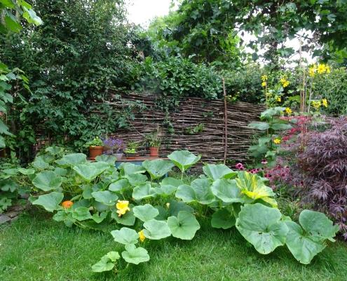 QGardens - Schutting | Wilgentenen | Erfafscheiding | QGardens Tuinontwerp | Tuincoach | Gardendesign | Gardencoach_eca