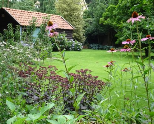 Grote tuin in de stad