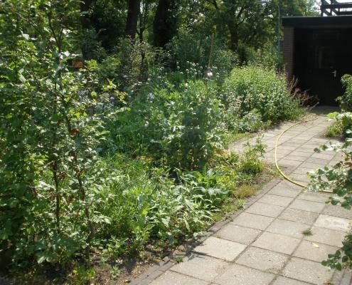 Voortuin | vogeltuin | QGardens tuinonywerp
